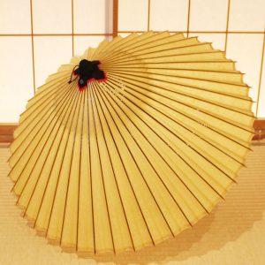 山吹色 和傘 蛇の目傘 極み 手すき和紙 草木染 Japanese umbrella