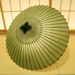 番傘 緑 松葉 Japanese umbrella