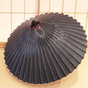 藍色 和傘 蛇の目傘 極み 草木染 手すき和紙 Japanese umbrella
