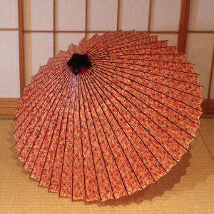 赤 蔦もよう もよう和傘 型染蛇の目傘 Japanese umbrella