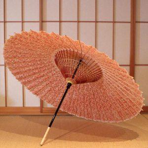 赤 蔦もよう もよう和傘 蛇の目傘 型染