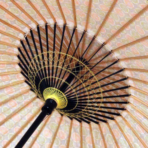 和日傘の内側