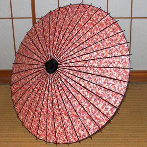 赤 蔦もよう もよう和傘 和日傘 型染和紙 Japanese umbrella