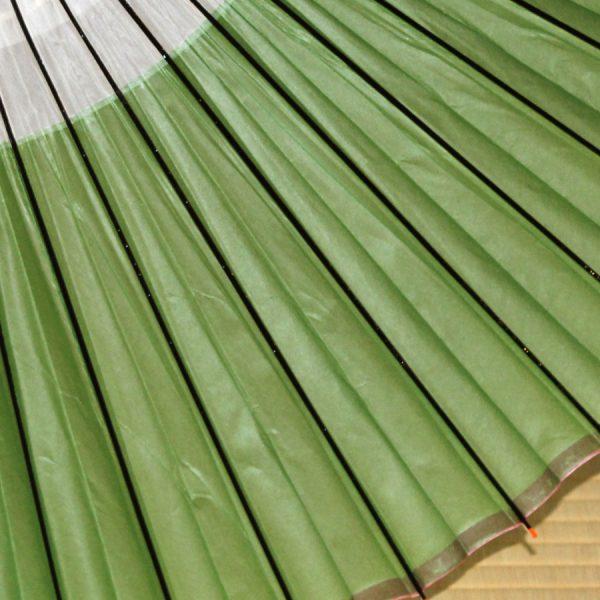 緑 和傘 蛇の目傘 蛇の目柄