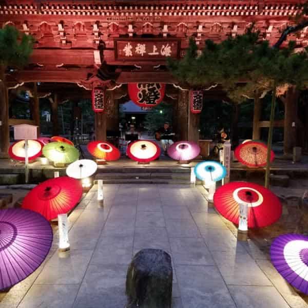 天野橋立 ディスプレイ 和傘を照明に使って美しい