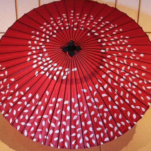 赤 和傘 桜ふぶき sakura