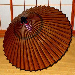 茶色の蛇の目傘 和傘 Japanese umbrella