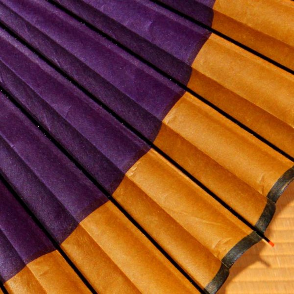 紫と黄金色 和傘