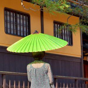 蛇の目傘 若草色 和傘 和傘と女性