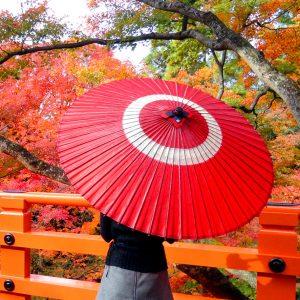 蛇の目柄 赤 紅葉と和傘