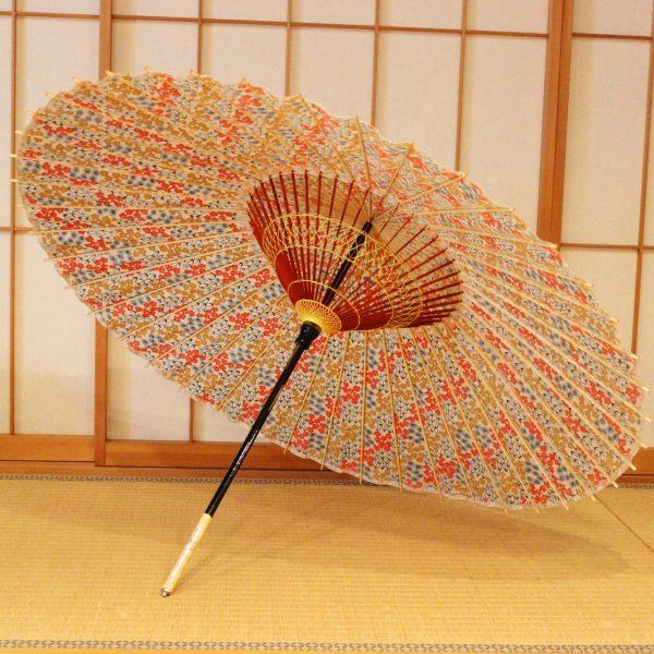 蛇の目傘 和傘 色あざやか Japaneseumbrella