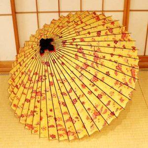 黄色地に華や鳥模様の和傘