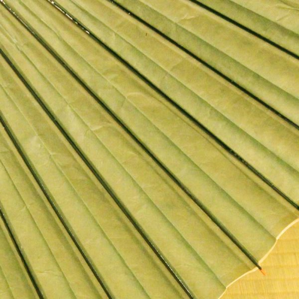 緑色の和傘、雨の日の和傘