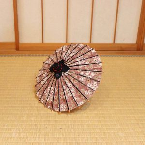 姫和傘/紫