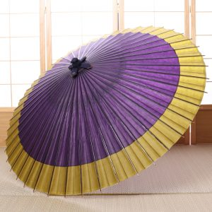 紫と黄緑のツートーンカラーの和傘です。