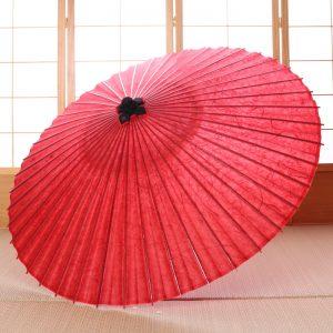 黒谷雲竜紙の和傘